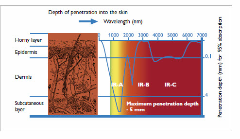 Infrared Halogen Lamps skin penetration